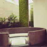 Bekijk een de moswand in Fort Resort Beemster het geeft de sauna een natuurlijke uitstraling en biedt rust