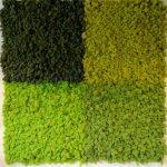 rendiermos ideaal om een moswand mee te bekleden voor een scheidingswand in uw kantoor of winkel
