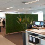 moswand als scheidingswand in ruimtes op kantoor