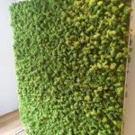 moswand als roomdivider voor kantoor of woonomgeving geeft een natuurlijke uitstraling
