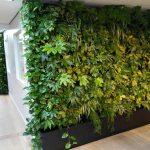 plantenwand vol met diverse plantsoorten