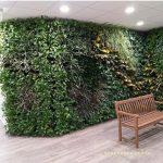 greenwall zorginstelling
