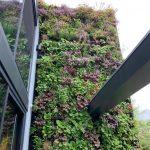 FAQ verticale tuinen