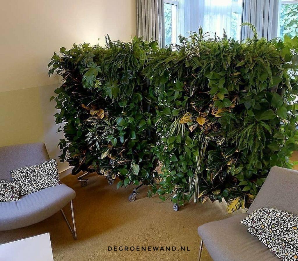interieurbeplanting huisartsenpraktijk