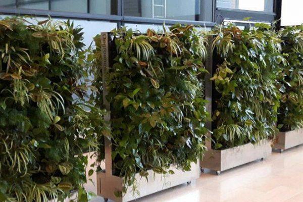 de plantenwand bij het filmfestival Rotterdam is verrijdbaar en akoestiekdempend